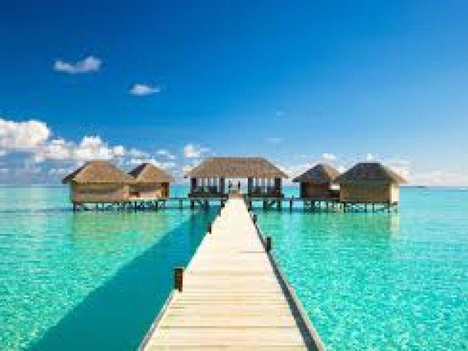 Islas Maldivas- un destino reconocido por su vegetación y clima cálido durante todo el año.