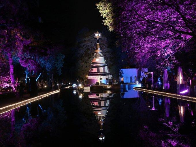 El pino se encuentra en el Parque Lincoln en Polanco