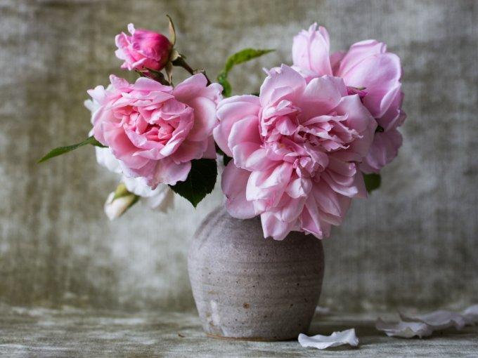 El color de estas flores es la máxima expresión de la dulzura. Por su universalidad, las rosas rosas son perfectas para el detalle especial.