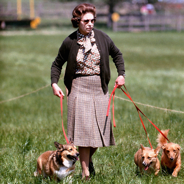 A la reina Isabel se le murió una perra muy especial