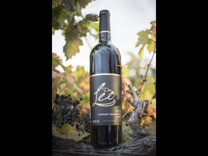 El viñedo comenzó su primera plantación en el año 2000 con una producción de una hectárea