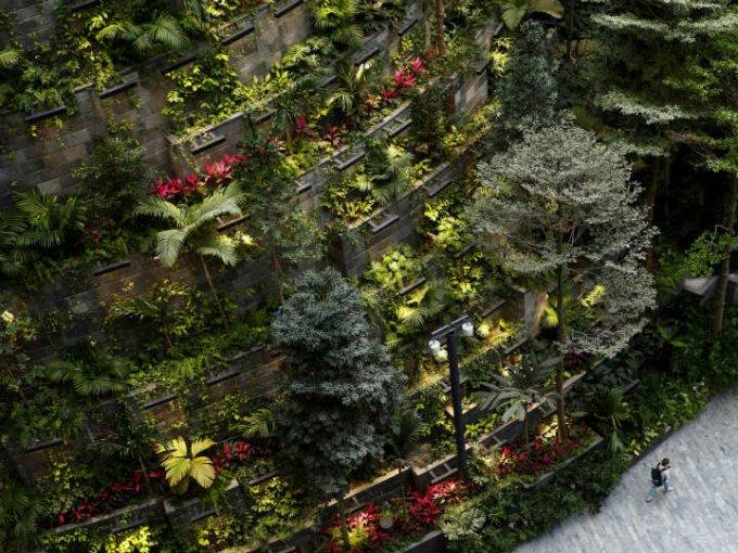 En total, hay dos mil árboles y 100 mil arbustos que le dan el toque mágico.