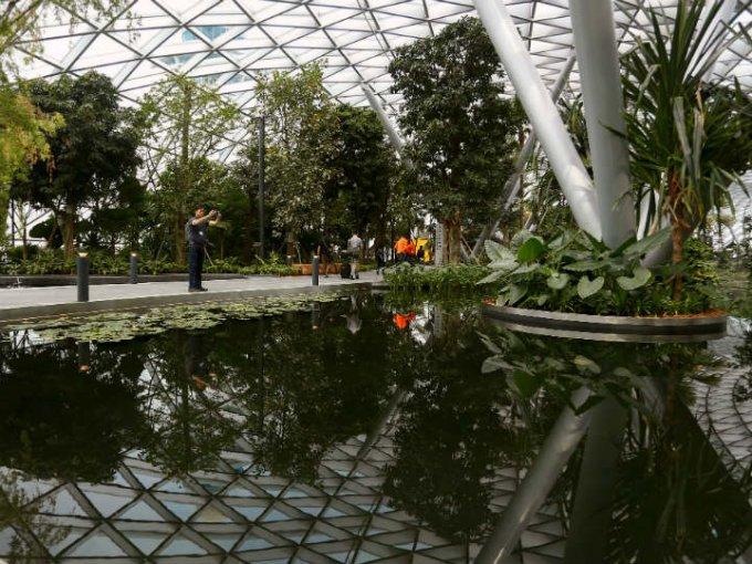 Además hay fuentes pequeñas y estanques que los visitantes recorren mientras esperan su vuelo.