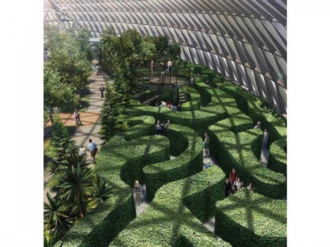 Una de las atracciones es el laberinto de arbustos.
