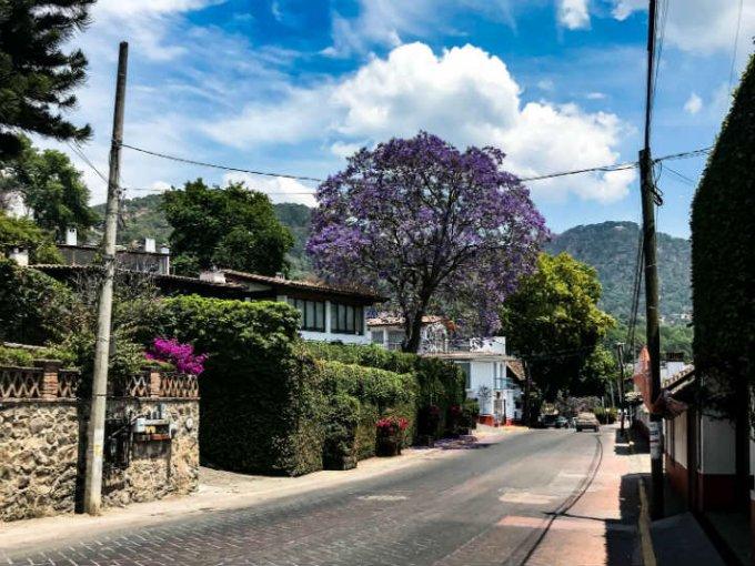 Las calles llenas de jacarandas y bugambilias son perfectas para una foto.